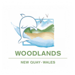 woodlands-500